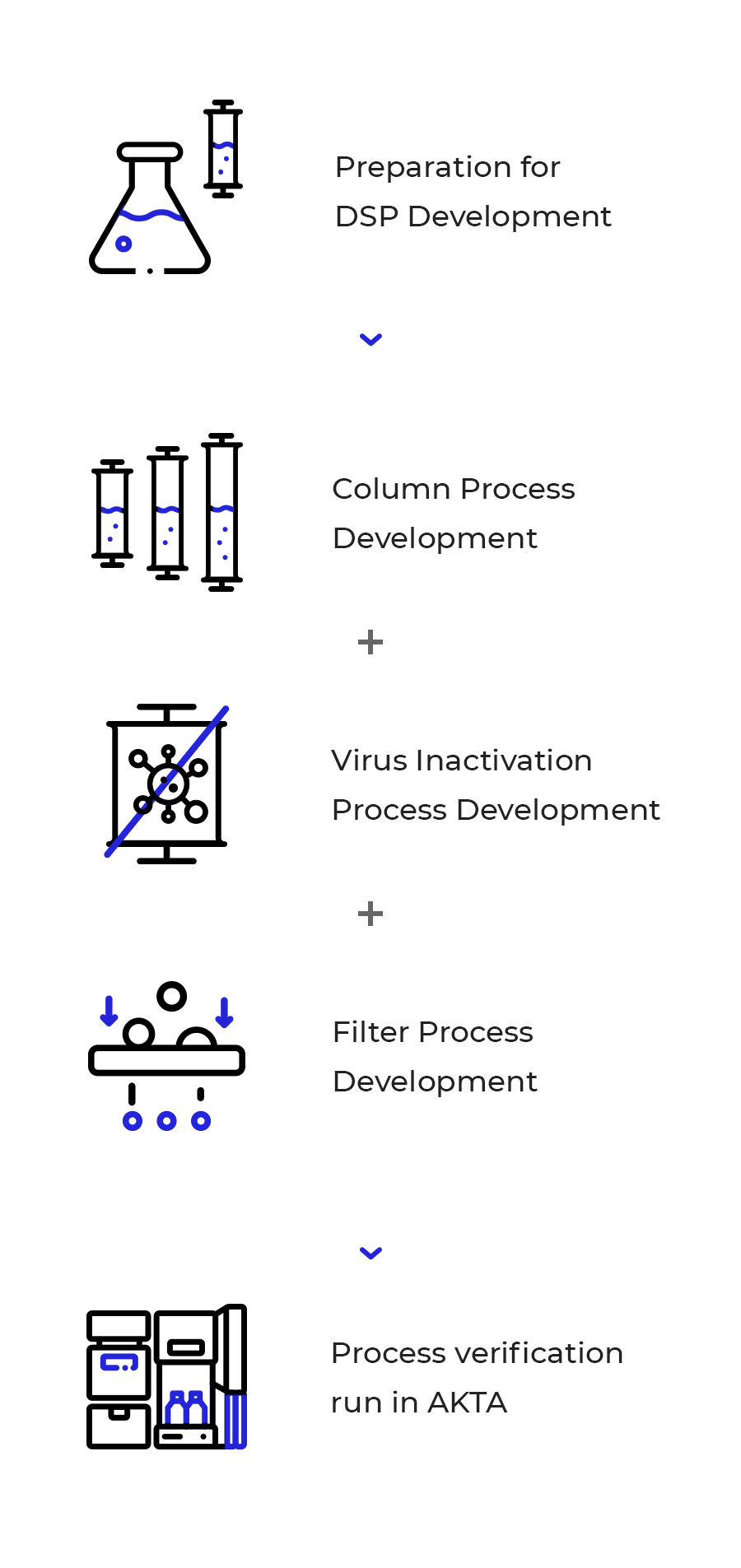 Downstream Process Development Flow
