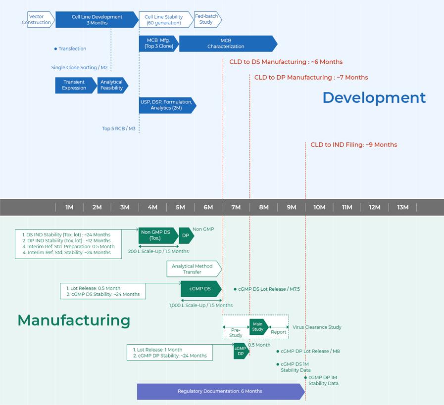 Development & Manufacturing
