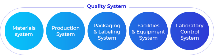 The Quality System