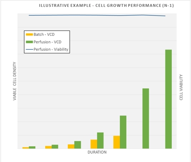 ILLUSTRATIVE EXAMPLE - CELL GROWTH PERFORMANCE(N-1)